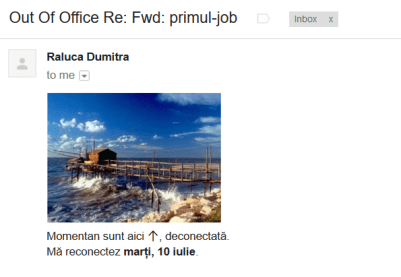 out of office Raluca Dumitra