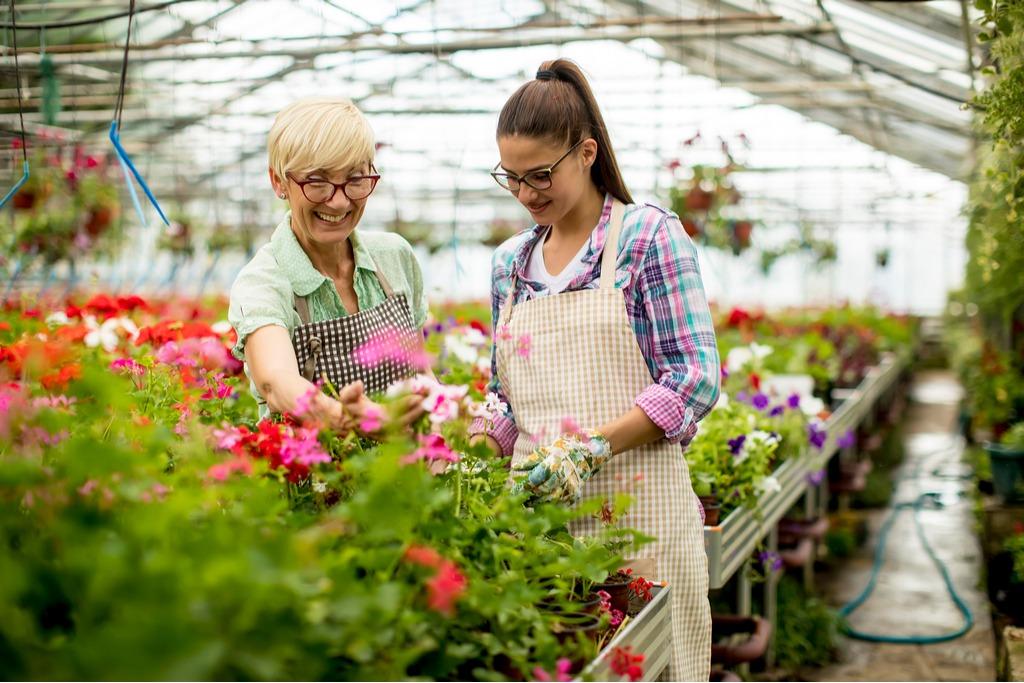 acte necesare angajare persoane peste 45 ani